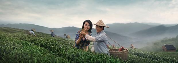 tea singapore air