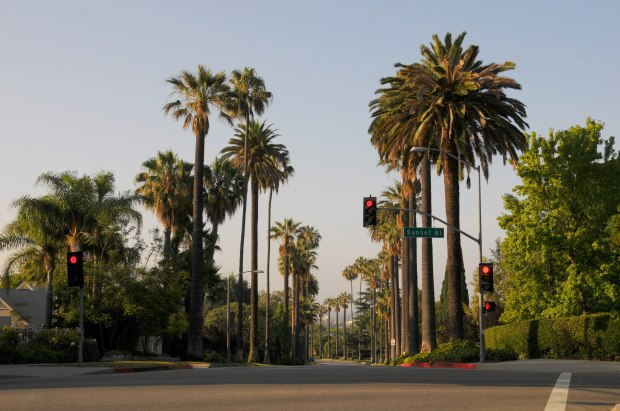 beverly drive
